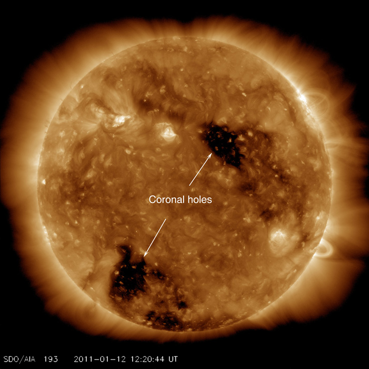 Coronal hole sunspot